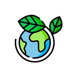 direccion-de-medio-ambiente